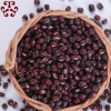 厂家直销羊咩咩红豆散装 五谷杂粮现磨豆浆原料批发红小豆