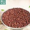 农家自产红豆 小红豆赤小豆五谷杂粮红豆薏米红豆散装量大从优