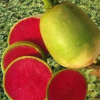 现挖5斤装新鲜心里美萝卜冰糖萝卜红心萝卜水果萝卜农家蔬菜包邮