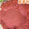 供应冻干草莓粉 草莓粉烘焙 奶茶调味草莓粉 冲调饮品散装草莓粉