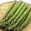 芦笋粉 厂家直销 价格实惠 优质天然芦笋