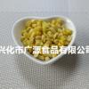 厂家冻干玉米粒 香甜酥扣脱水蔬果干脱水即食蔬菜散装称重