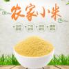 内蒙古赤峰特产2.25kg袋装小米月子新米宝宝米久华粮油黄小米5斤