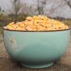 批发50公斤/袋新鲜东北玉米烘焙玉米粒黄玉米糁饲料玉米厂家直销