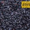 20斤包邮装东北大米黑米粗粮新米OEM加工10公斤一件代发