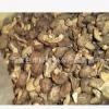香菇椴木香菇野生香菇食用菌香菇大山里半野生香菇
