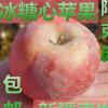 正宗新疆阿克苏冰糖心苹果 红富士当季水果散装水果批发一件代发