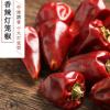 贵州灯笼椒中辣特香干辣椒散装500g调味香料足干一件代发整袋批发