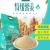 中谷特级藜麦2500g 谷天加 青藏高原特产 白藜麦米龙牙芽米非秘鲁