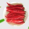 厂家直销 泡美人椒红辣椒泡椒酱腌菜酒楼专用批发