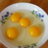 无公害富硒土鸡蛋养殖场批发鸡蛋 新鲜山地生态土鸡蛋供应销售