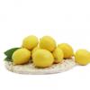 四川安岳柠檬皮薄多汁新鲜水果新鲜黄柠檬可榨汁泡水现摘现发