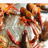 江苏兴化本地大红龙虾789鲜活产地 直发养殖基地发货江苏兴化龙虾