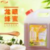 大拇指龙眼蜜风味糖浆 龙眼蜂蜜贡茶原料 浓缩蜂蜜风味糖浆2.6kg
