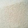 50公斤早籼米营养晚餐杂交水稻早籼米蒸发糕用现货供应50000g