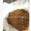 面包虫黄粉虫大麦虫自产自销优等品量大优惠