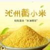 山西特产沁州黄小米糯小黄米特级5斤真空新黄小米宝宝吃的月子米