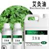 艾灸油 艾叶油 植物艾草蒸馏提取精油