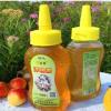 丁家园蜂蜜洋槐蜜 农家自产蜂蜜 蜂蜜一件代发 量大从优500g