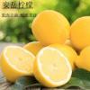 安岳新鲜柠檬新鲜一件代发 非香水青柠檬产地直销