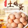 虫子蛋 30枚 支持 一件代发 贴牌定制河南农产品1600人气真品
