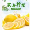 四川安岳现摘当季新鲜柠檬尤克力柠檬大山土货果农种植黄柠檬批发