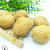 厂家直销新疆薄皮核桃 散装批发干果生核桃休闲零食 量大优惠