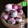 新蒜头紫皮多瓣糖醋新鲜湿大蒜2019营养蔬菜蒜素农家现挖5斤包邮