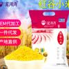 泥河湾有机红谷小米 有机黄小米 宝宝米 月子米 小米粥 粘糯小米