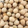 厂家批发 优质大颗粒白豌豆 方绿豌豆 圆绿豌豆 高品质白豌豆