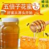 厂家直供散装蜂蜜 农家自产量大从优五倍子蜜 1000g瓶装五倍子蜜