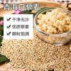 青藏高原白藜麦米青海特产一级黎麦杂粮孕妇宝宝米25kg装大包装