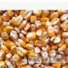 批发供应方形玉米 球形玉米粒爆花玉米 五谷杂粮袋装口