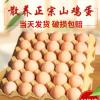 30枚蒙山小院初产土鸡蛋山鸡蛋柴鸡蛋笨鸡蛋鸡蛋厂家全国招商