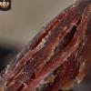 牛肉小铺 牛肉干内蒙古特产风干手撕牛肉干散装200g 分销一件代发