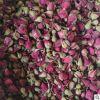 天然月季花茶 散装四季红 花草茶月月红 批发干月季花