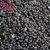 花椒籽 厂家批发供应各种花椒种子 新鲜纯正调味花椒籽