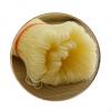 广西特产桂林米粉1斤干米粉螺蛳粉粉店餐饮店特产实体店