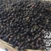 黑胡椒粒越南进口黑胡椒颗粒非海南胡椒
