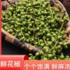 大量销售供应 鲜花椒 青花椒 新鲜 青花椒粒 麻椒干货香辛料